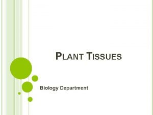 PLANT TISSUES Biology Department PLANT TISSUES Tissues can