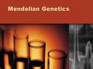 Mendelian Genetics Mendelian Genetics Gregor Mendel Father of