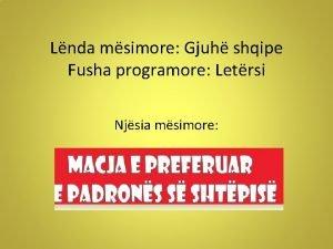Lnda msimore Gjuh shqipe Fusha programore Letrsi Njsia