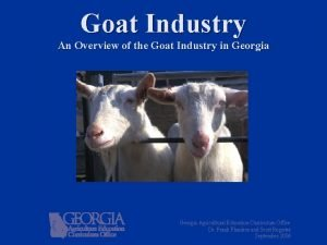 Goat Industry An Overview of the Goat Industry