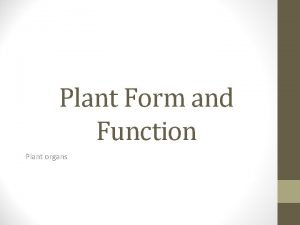 Plant Form and Function Plant organs Plant organs