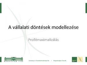 A vllalati dntsek modellezse Profitmaximalizls Profit fggvny ltalnosan