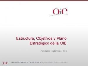 Estructura Objetivos y Plano Estratgico de la OIE