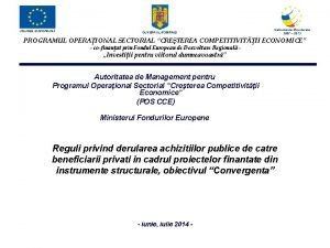 UNIUNEA EUROPEAN GUVERNUL ROM NIEI Instrumente Structurale 2007