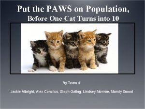 Put the PAWS on Population Before One Cat
