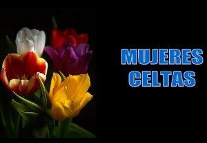 Las mujeres de origen Celta eran criadas tan