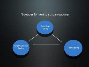 Niveauer for lring i organisationen Individuel lring Organisatorisk