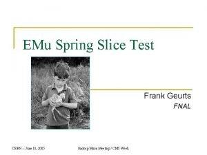 EMu Spring Slice Test Frank Geurts FNAL CERN
