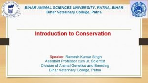 BIHAR ANIMAL SCIENCES UNIVERSITY PATNA BIHAR Bihar Veterinary