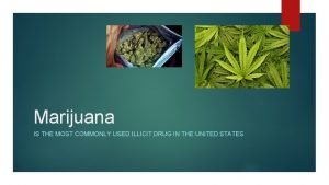 Marijuana IS THE MOST COMMONLY USED ILLICIT DRUG