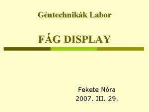 Gntechnikk Labor FG DISPLAY Fekete Nra 2007 III