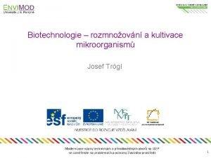 Biotechnologie rozmnoovn a kultivace mikroorganism Josef Trgl Modernizace