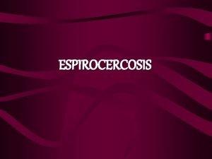 ESPIROCERCOSIS DEFINICIN Esfago pared del estmago y aorta