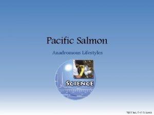 Pacific Salmon Anadromous Lifestyles FREEING THE ELWHA Define