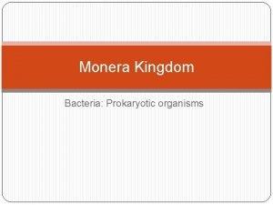 Monera Kingdom Bacteria Prokaryotic organisms Bacteria Characteristics Prokaryotic