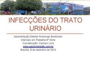 INFECES DO TRATO URINRIO Apresentao Gabriel Alvarenga Beckmann