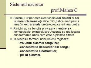 Sistemul excretor prof Manea C n Sistemul urinar
