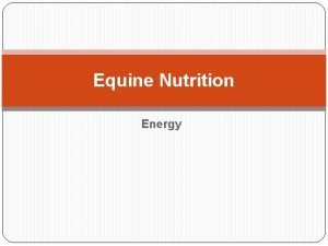 Equine Nutrition Energy Energy First Law of Thermodynamics