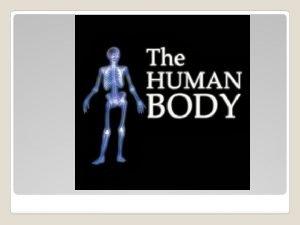Homeostasis The bodys ability to maintain an internal