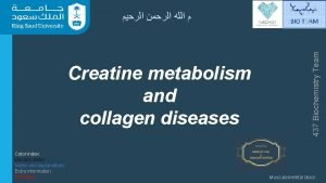 Creatine metabolism and collagen diseases Color index Doctors