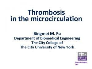 Thrombosis in the microcirculation Bingmei M Fu Department