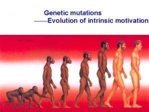 Genetic mutations Evolution of intrinsic motivation Base substitution