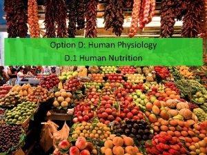 Option D Human Physiology D 1 Human Nutrition