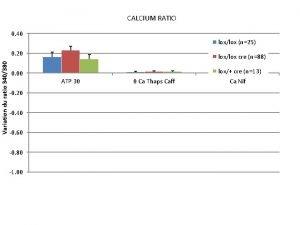 CALCIUM RATIO 0 40 Variation du ratio 340380