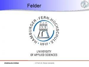 Felder Elektrische Gren Prof Dr Remo Ianniello Ziele