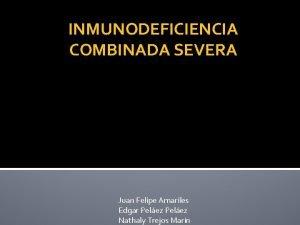 INMUNODEFICIENCIA COMBINADA SEVERA Juan Felipe Amariles Edgar Pelez