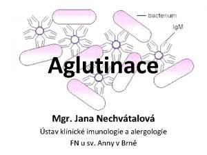 Aglutinace Mgr Jana Nechvtalov stav klinick imunologie a