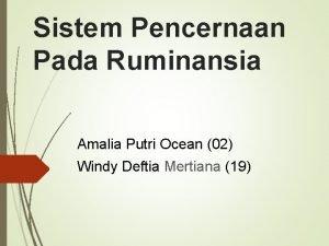 Sistem Pencernaan Pada Ruminansia Amalia Putri Ocean 02
