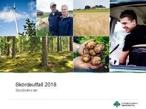 Skrdeutfall 2018 Stockholms ln Stockholms ln Totalt antal