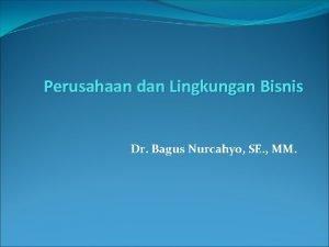 Perusahaan dan Lingkungan Bisnis Dr Bagus Nurcahyo SE