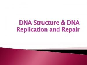 DNA Structure DNA Replication and Repair Genetic Information