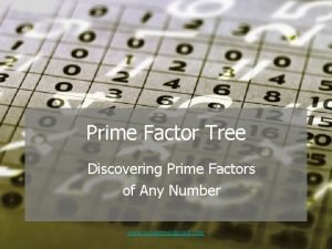 Prime Factor Tree Discovering Prime Factors of Any