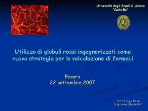 Universit degli Studi di Urbino Carlo Bo Utilizzo