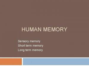 HUMAN MEMORY Sensory memory Short term memory Long