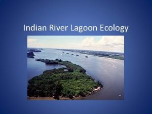 Indian River Lagoon Ecology What is a lagoon