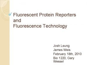 Fluorescent Protein Reporters and Fluorescence Technology Josh Leung
