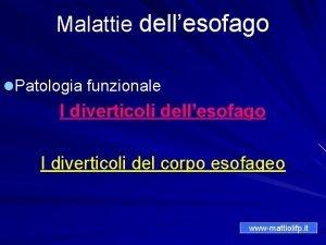 Malattie dellesofago l Patologia funzionale I diverticoli dellesofago