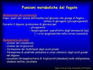 Funzioni metaboliche del fegato Metabolismo dei carboidrati Dopo