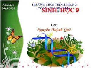 Nm hc 2019 2020 TRNG THCS TRNH PHONG