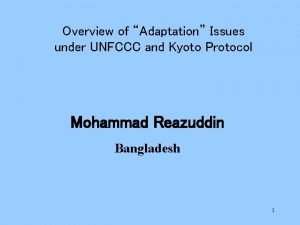 Overview of Adaptation Issues under UNFCCC and Kyoto