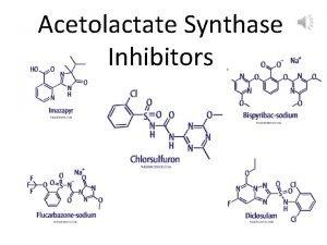 Acetolactate Synthase Inhibitors Acetolactate Synthase Inhibitors IMI Imidazolinones