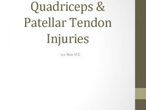 Quadriceps Patellar Tendon Injuries Ian Rice MD Introduction