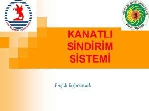 KANATLI SNDRM SSTEM Prof dr Ergn ztrk Tavuklarda