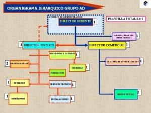 ORGANIGRAMA JERARQUICO GRUPO AD CONSEJO DE ADMINISTRACION DIRECTOR