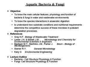 Aquatic Bacteria Fungi v Objective w To know