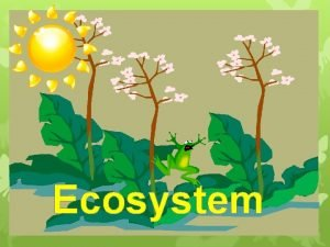 Ecosystem Dynamics of Ecosystem The various components of